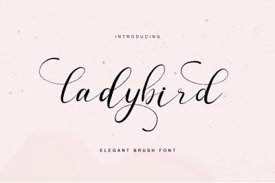 ladybird - elegant brush font