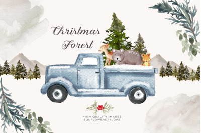 Christmas Stories Watercolour, Baby animals nursery clipart, woodland
