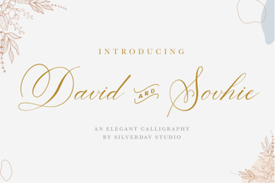 David and Sovhie