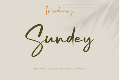 Sundey - Beauty Script Font