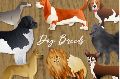 Pedigree Dog Breeds Animal Clipart Set