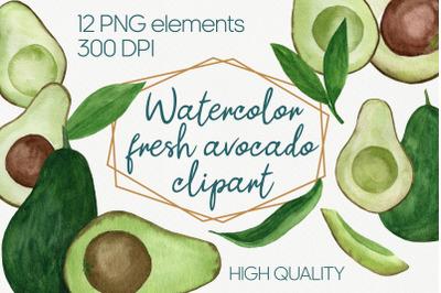 Avocado watercolor clipart set