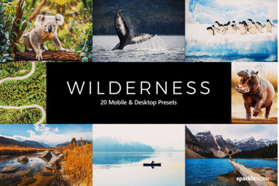 20  Wilderness LR Presets