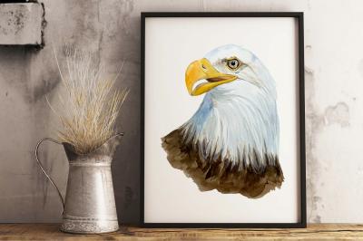Watercolor Bald Eagle - Clip Art and Print