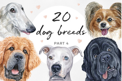 Watercolor dog illustrations. Cute 20 dogs. Dog breeds. (PART 4)