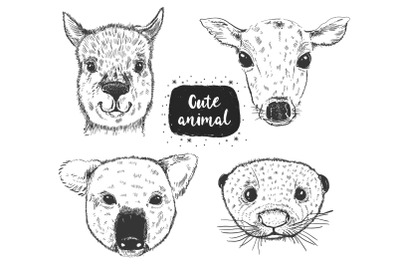 Animal head sketch collection