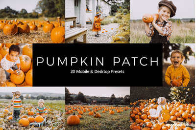 20  Pumpkin Patch LR Presets