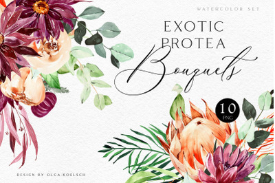 Watercolor protea and burgundy flowers clipart. Tropical floral  bouqu