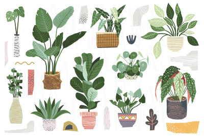 Home Plant Collection Set