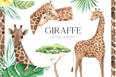 Watercolor Giraffe clipart.