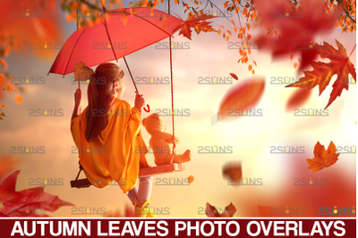 Autumn leaves overlay & Falling leaf, Photoshop overlay: Fall png over