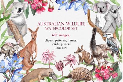 Australian Wildlife Watercolor Set. Clipart, Patterns & Animal Posters