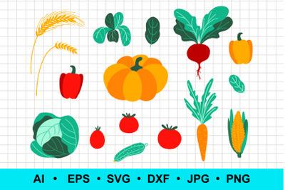 Vector vegetable set