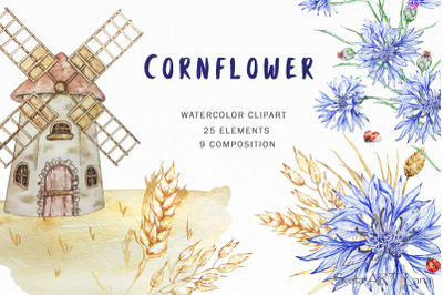 Watercolor Flowers Clipart, Cornflower, Blue WildFlowers