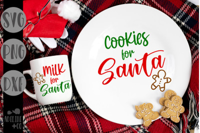 Cookies and milk for Santa, Christmas