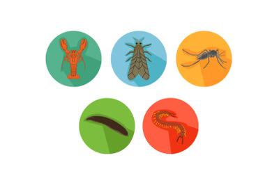 Lobster Friends Cartoon Animals Icon Bundle