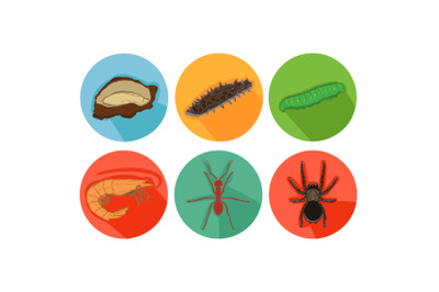 Caterpillar Friends Cartoon Animals Icon Bundle