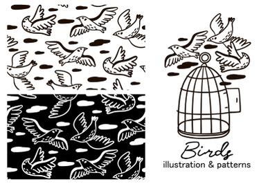 BIRDS illustration & patterns