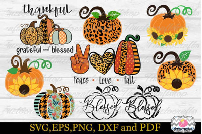 Fall Pumpkin Bundle SVG, Thanksgiving Pumpkin SVG, Blessed Pumpkin SVG