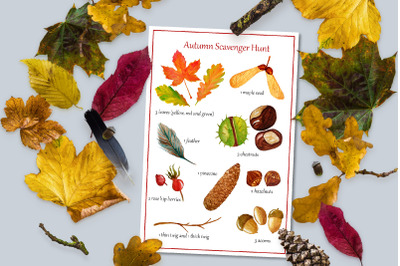 Autumn Scavenger Hunt. Kids activity