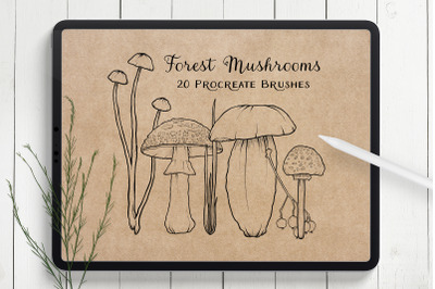 Mushroom Procreate Brushes - Stamp Brushes - Hand Drawn