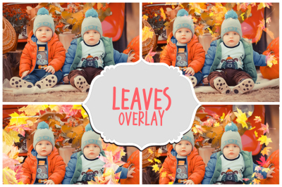 Autumn Falling Leaves Overlays