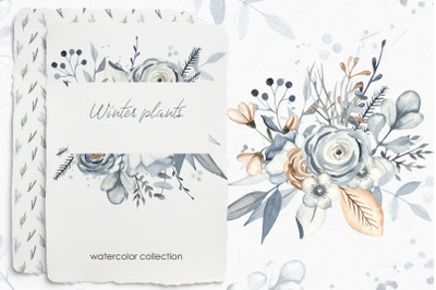 Winter plants watercolor collection