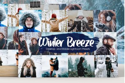 Winter Breeze Lightroom Presets