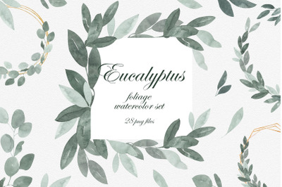 Eucalyptus Foliage Watercolor Clipart Set