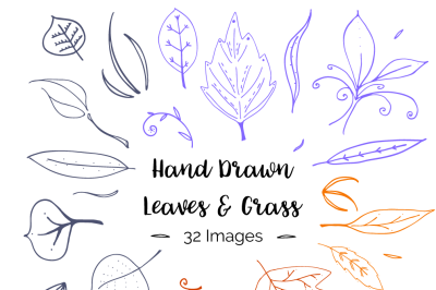 Hand Drawn Leaves and Grass