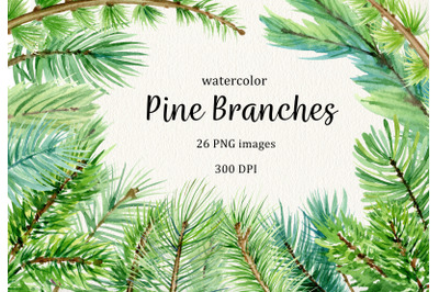 Watercolor pine branches forest clipart. Winter woodland clip art