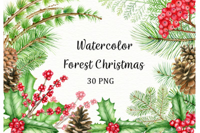 Watercolor forest christmas clipart. Winter woodland PNG clip art