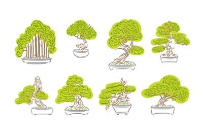Bonsai tree japanese illustration set in 3 styles