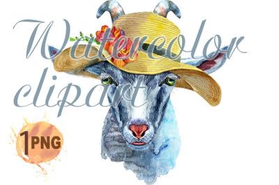 Goat watercolor illustration in summer
