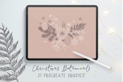 Christmas Procreate Brushes - Winter Botanicals