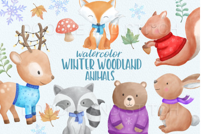 Winter Woodland Animal Clipart