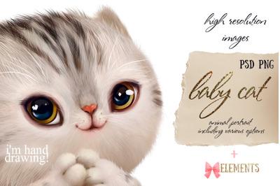 Baby cat (animal portrait)