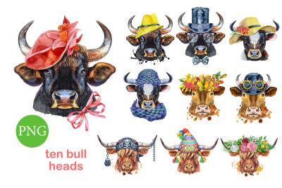 Cute watercolor bulls