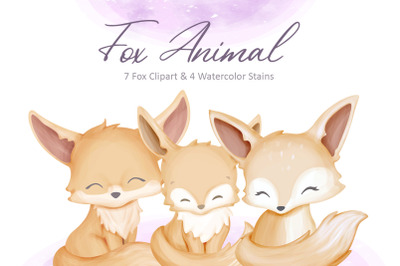 Fox Animal Collection