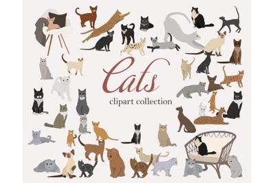 Cat clip art set-hand drawn cat breeds-digital PNG vector-cute animals