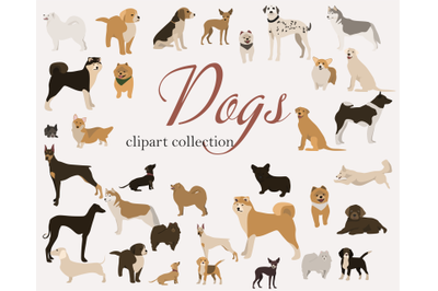 Dog clip art set s-hand drawn dog breeds-digital PNG svg-cute anima