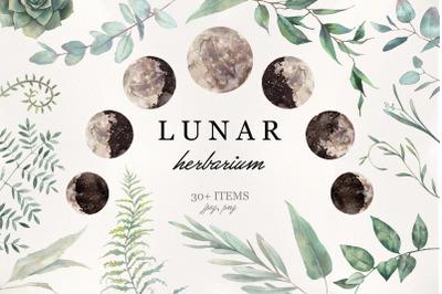 Lunar Herbarium