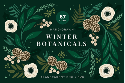 Christmas Botanical Illustrations
