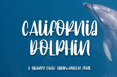 California Dolphin Quirky Handwritten