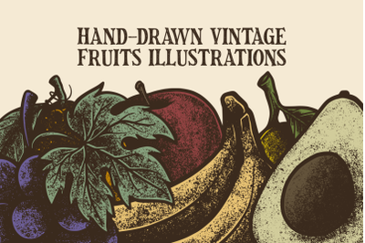 Hand-Drawn Vintage Fruits Illustrations
