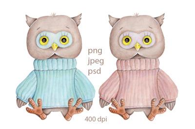 Two cute owls in warm sweater. Watercolor.