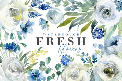 Fresh Watercolor Blue & White Flowers PNG