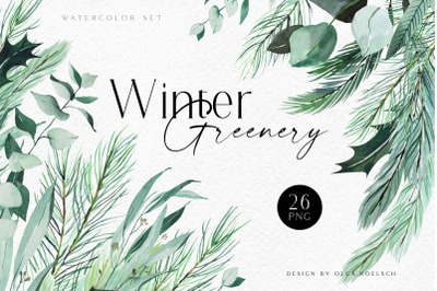Watercolor christmas greenery clipart, Eucalyptus and pine tree png