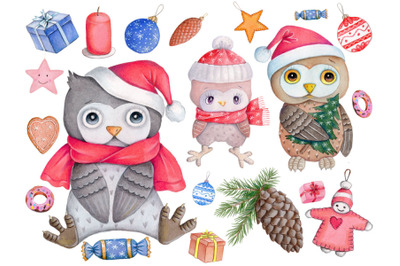 New Year Owls Set with 14 design elements