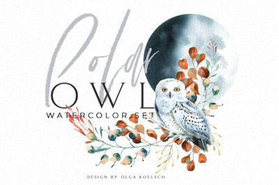 Woodland Owl Clipart, Watercolor forest bird winter